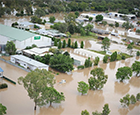 Moree in Flood