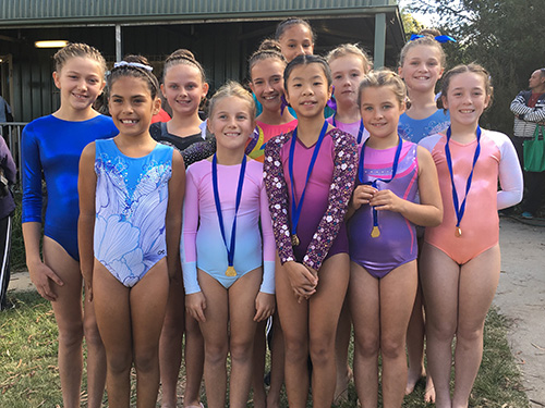 (L-R) PCYC Gymnasts Jemima Burke, Demi Green, Arabella Drogemuller, Sarah Barwick, Cedar Mitchell, Selena McGrady, Sophie Lai, Katelyn Scholl, Alice Turner, Grace Grantham and Haylie Turner, competing at Armidale thanks to funding from the Moree Plains Shire Council.
