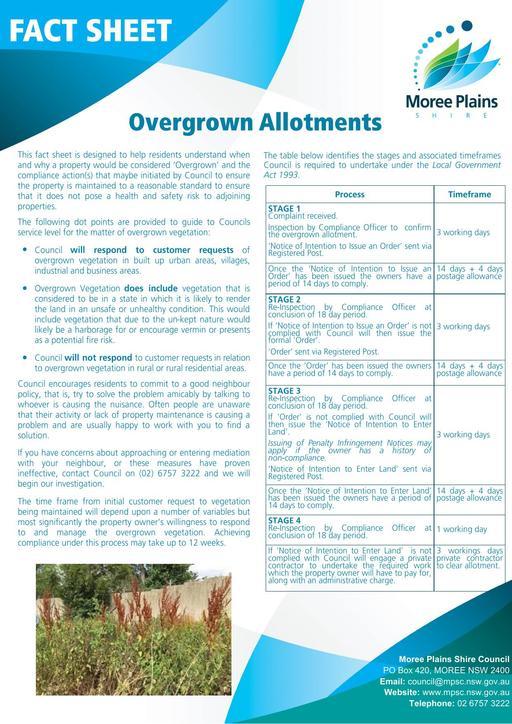 Fact Sheet   Overgrown Allotments