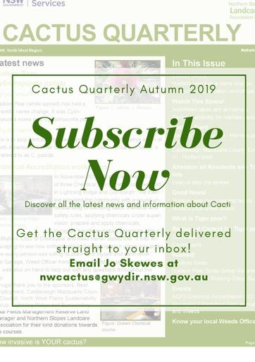 Cactus Quarterly Autumn 2019 1